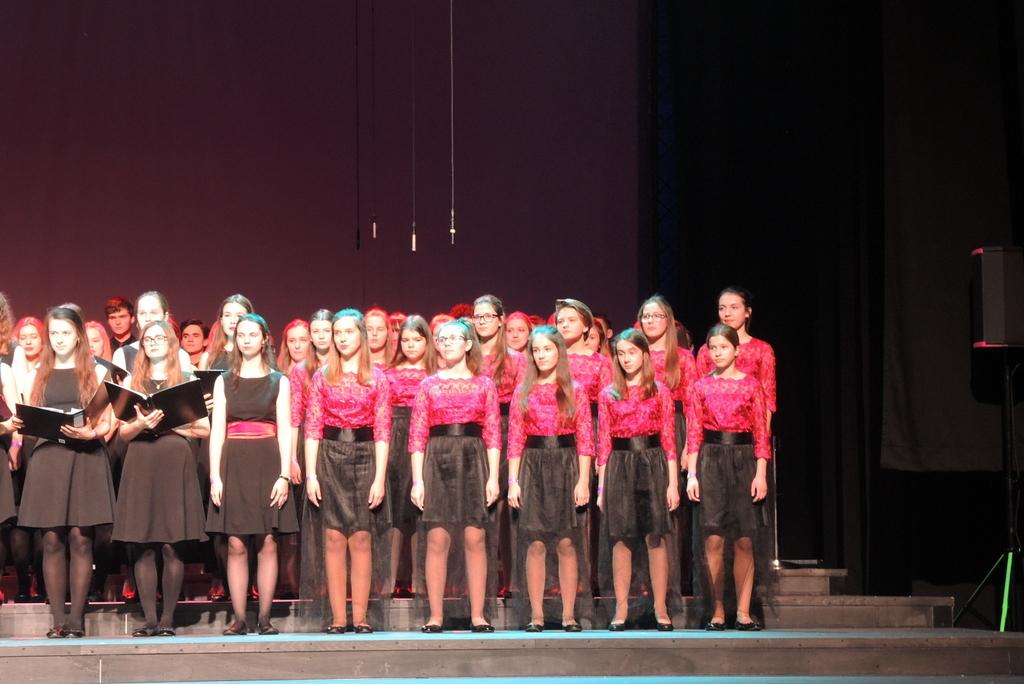 Śpiewajaca Polska (3)