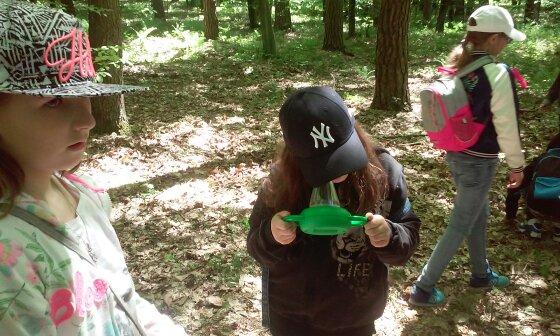 lekcje w lesie